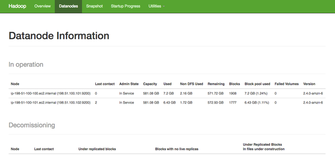 Hadoop YARN stats - DataNode information panel