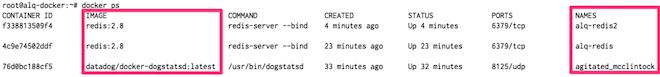 Docker tags in Datadog