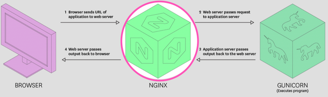 Issue lies in NGINX