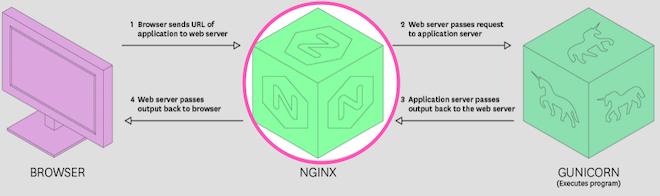 Gunicorn health - Issue lies in NGINX