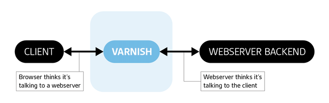 Varnish client backend